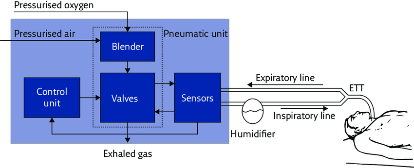 Basic-structure-and-main-functional-components-of-a-mechanical-ventilator-ETT-min