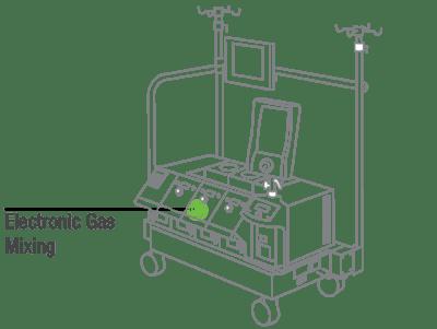 illustration-market-medical-heart-lung-5d64f-min